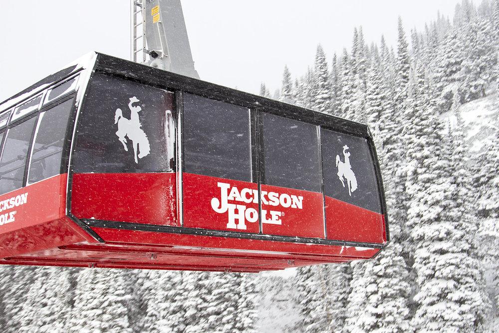 The Tram at Jackson Hole. - ©Jackson Hole Mountain Resort