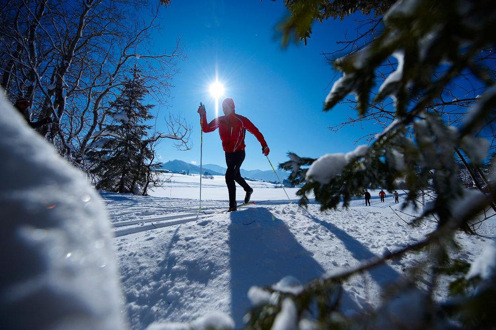 Langlaufen in Oberstaufen - © Oberstaufen Tourismus