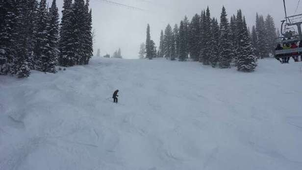 Thin powder on top of a packed base, but still good snow. Bottom half of mountain a bit skied off on the groomers. 8 inches last night should make for an awesome day today.
