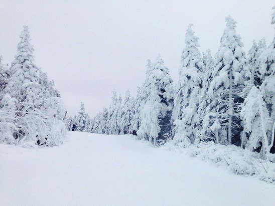 Powder in Killington (USA) - © ALENA's iPhone
