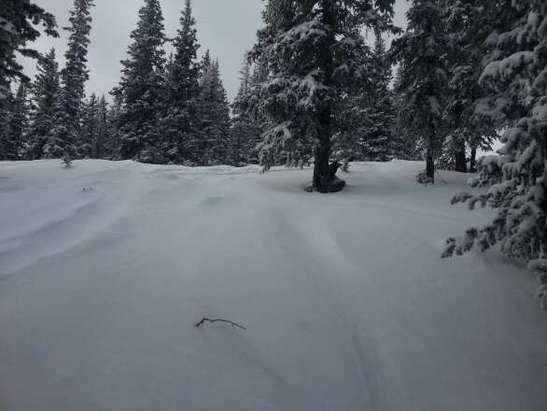 Snowed slowy all day Saturday tons of untouched powered especially in the trees! Awesome mountain tons of good runs!