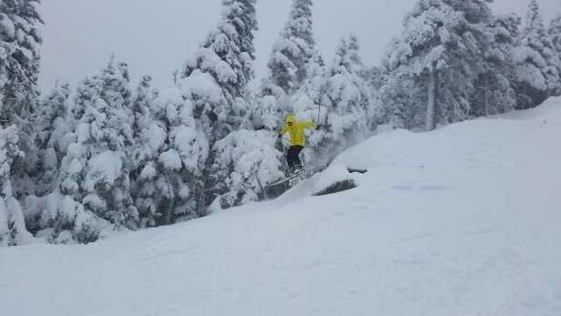 great day today. 4'' of pow on top of some fast groomers.