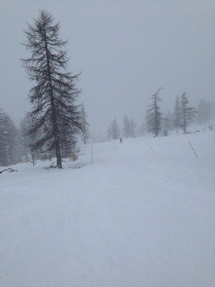 White out, Snow falling since 0600am. Fresh powder everywhere Hardwork at the moment!