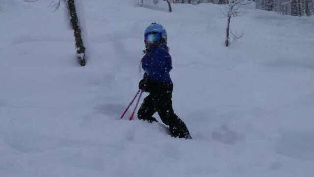 Skied powder all day!  Even found small powder stashes in the late afternoon!!!  What a great holiday weekend!  :)