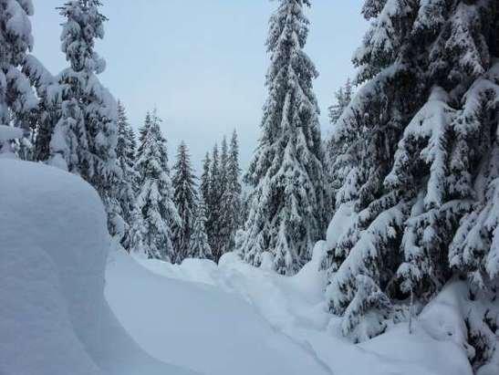 knallfin snø og forhold på toppen.