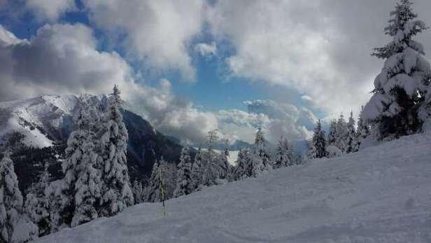 davvero ottime le piste, sopratutto la rossa non battuta, un vero spasso per noi snowboarder!!! neve al top!!!