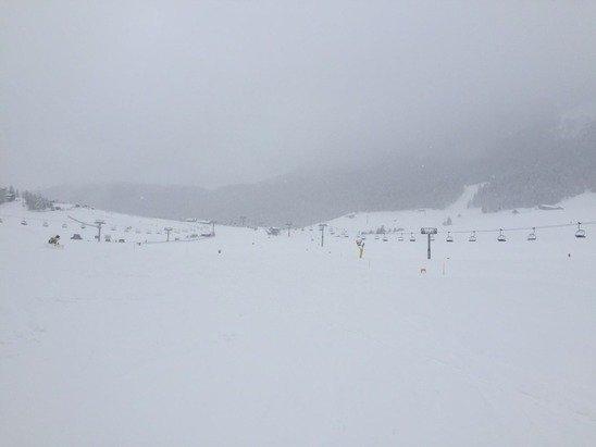 Neve alla grande... Oggi bufera. Sulle piste poca gente perché neve fresca e non battuta.