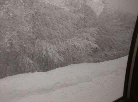 oggi pomeriggio continuava a nevicare. piste non battute ancora. troppa neve tutta insieme. un paio di impianti chiusi, tra cui quello in quota per troppa neve e condizioni proibitive (oggi). Eccellente per i prossimi giorni.