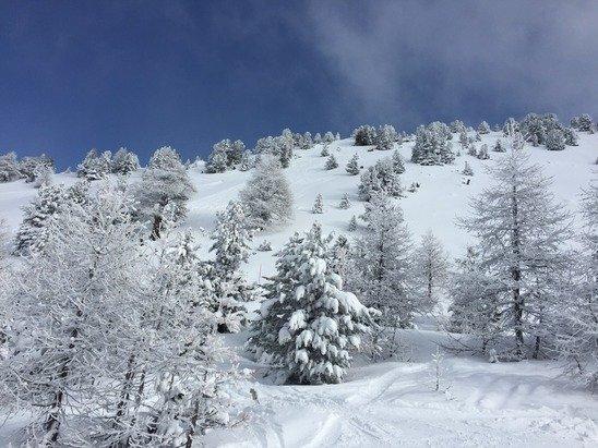 Superbe neige et très bonne poudreuse !!!