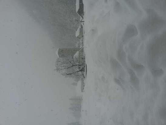 21 febbraio 2014....vedete un po se non nevicava.....
