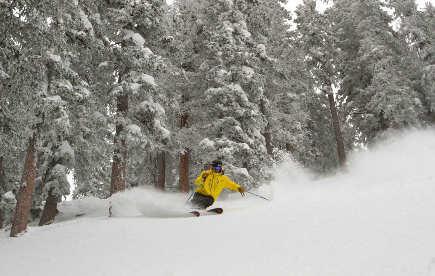 Taos revels in powder delivered at the end of Feb. 2015. - © Taos Ski Valley