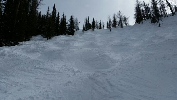 Panorama Mountain - A bit icy  in the AM but softening  nicely  after lunch. The extreme zone was excellent by mid afternoon. Gunbarrel and the Dunes were great. - © Dale's phone