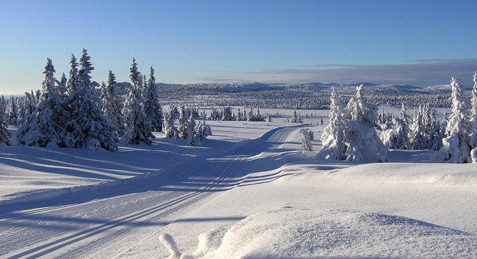 Sjusjøen - ©Jørn Jensen   jornjens @ Skiinfo Lounge