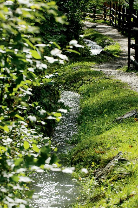Waalweg im Vinschgau - © Südtirol Marketing/Helmuth Rier