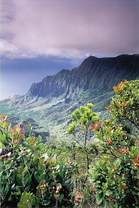 Hawaii Impressionen - © Hawaii Tourism Authority (HTA) / Ron Dahlquist
