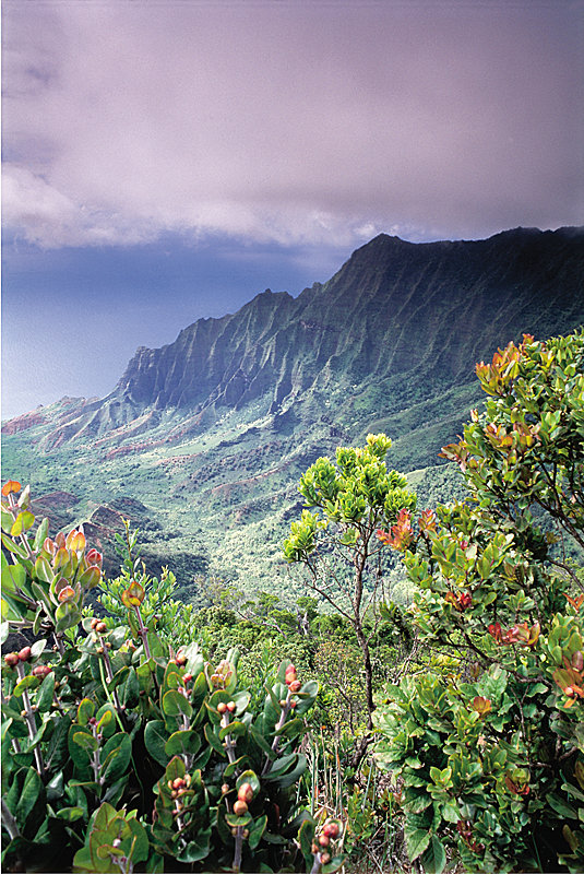 Kalalau Valley - © Hawaii Tourism Authority (HTA) / Ron Dahlquist