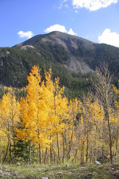 Cabresto Peak in the Latir Wilderness in fall. Image by Taos Destination Connection Team.