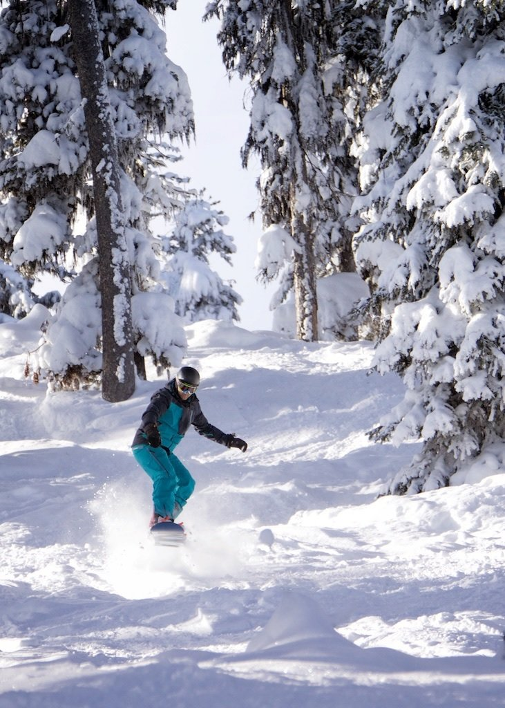 Skiing the trees at Kimberley Alpine Resort. - © The Real McKenzie Photography