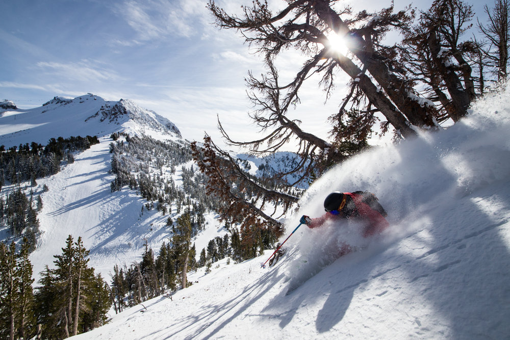 Sunshine and powder are key ingredients to an unbeatable day at Mammoth. - © Liam Doran