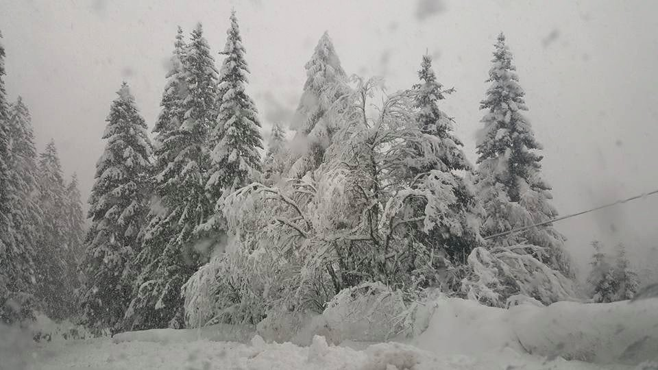Folgaria 29.02.16 - © Folgaria Ski Facebook