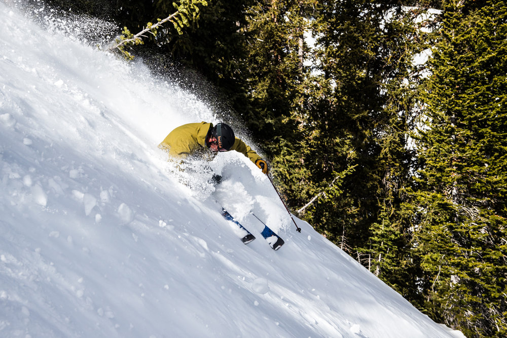 If this is what no new snow at Snowbird looks like, we'll take it! - © Liam Doran