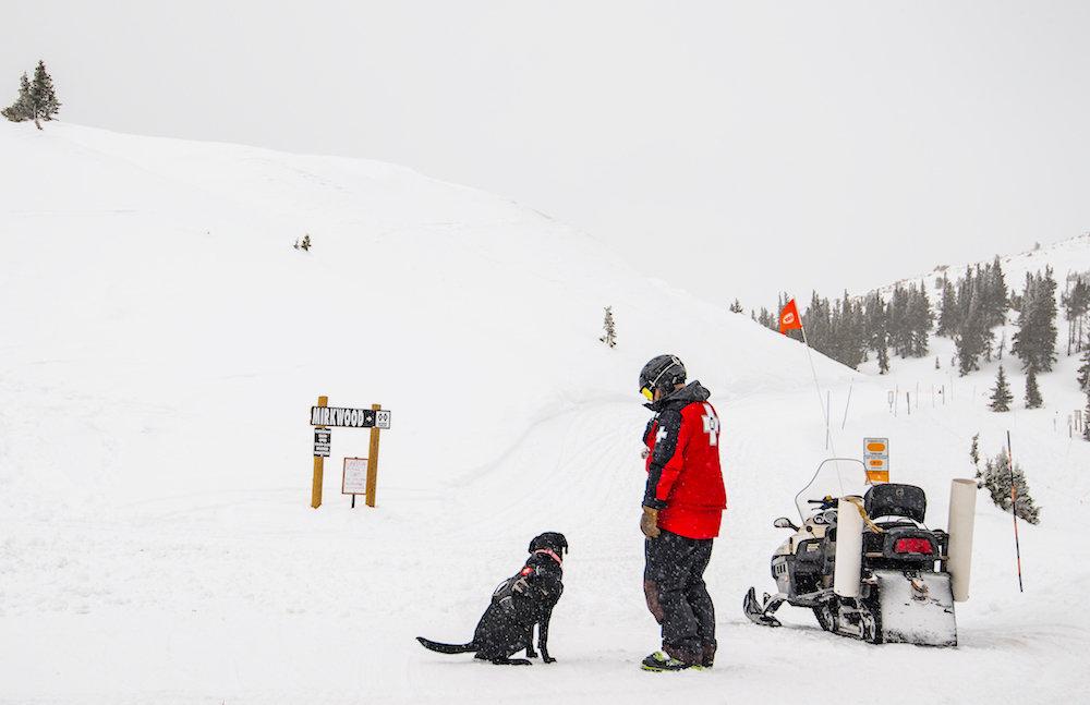 Lucy eyes the terrain like a seasoned vet. - ©Monarch Mountain