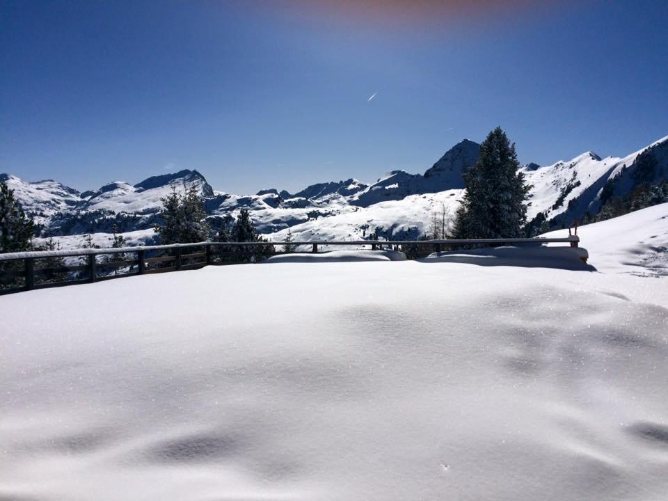 Alpe Cermis, Cavalese 26.02.16 - © Alpe Cermis, Cavalese Facebook