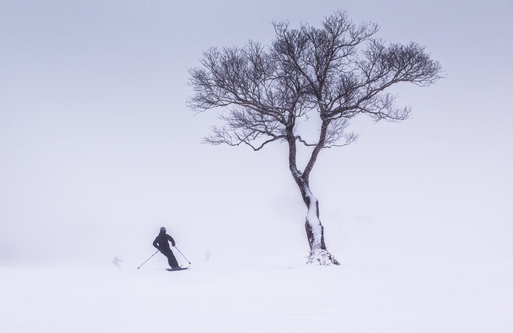 "A skier gets ""Zen"" on the slopes of Niseko. - © Linda Guerrette"