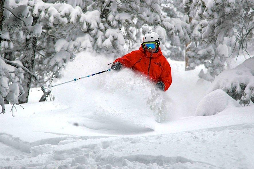A skier sinks into powder at Eldora Mountain Resort in Colorado. - ©Eldora Mountain Resort