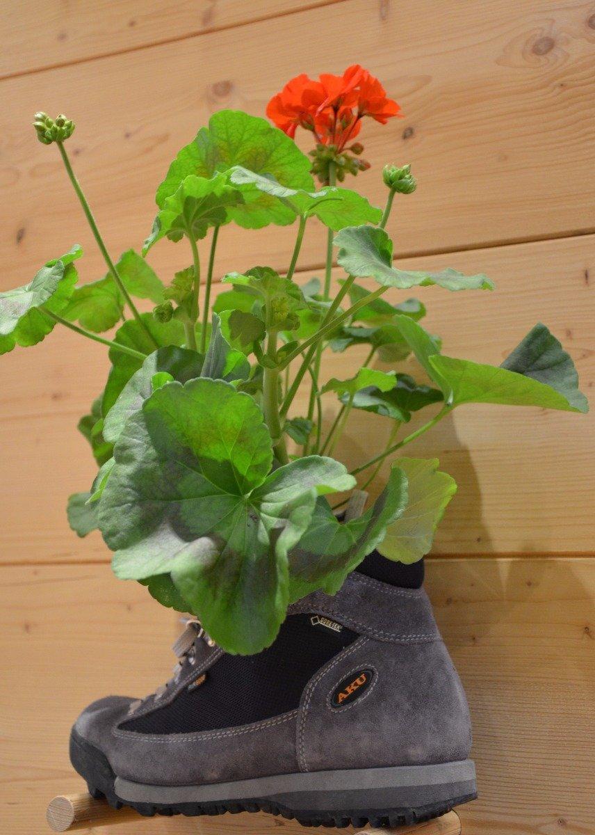 Schuhe als Blumenvase - bei Aku - ©bergleben.de