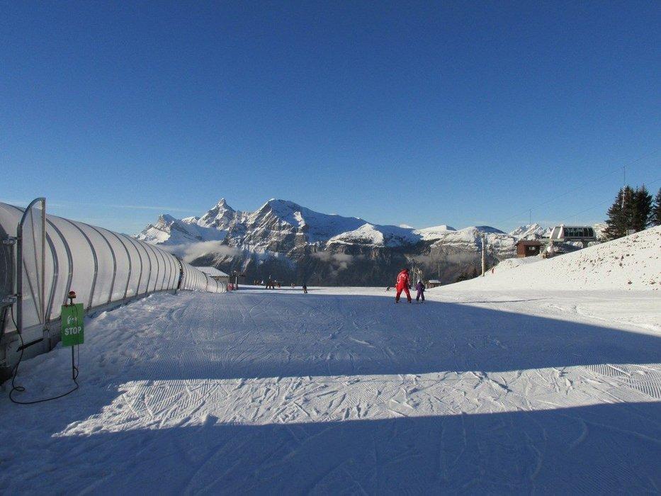 Apprentissage du ski sur l'espace débutants des Carroz - © Office de Tourisme des Carroz