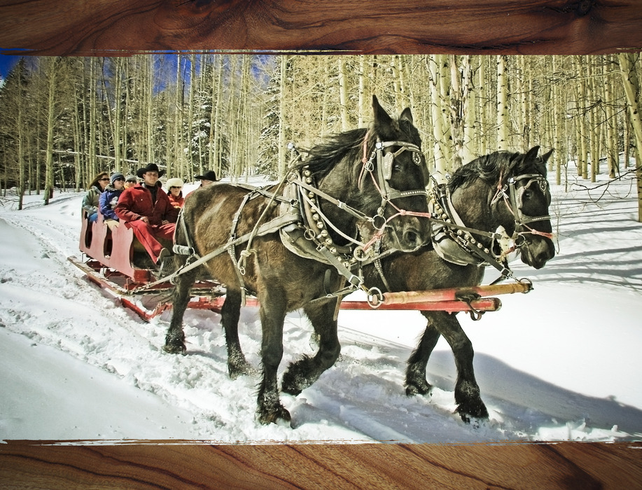 Sleigh ride at Durango, CO.