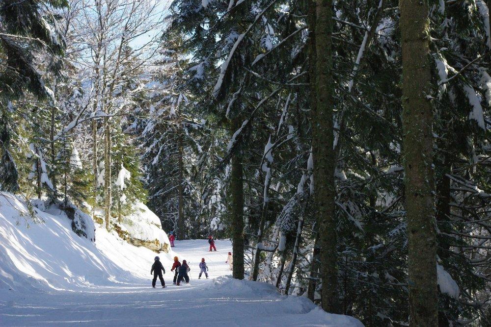 Ski loisir et tranquille sur les pistes de Méaudre - © Office de Tourisme de Méaudre / Nadine Clauzier