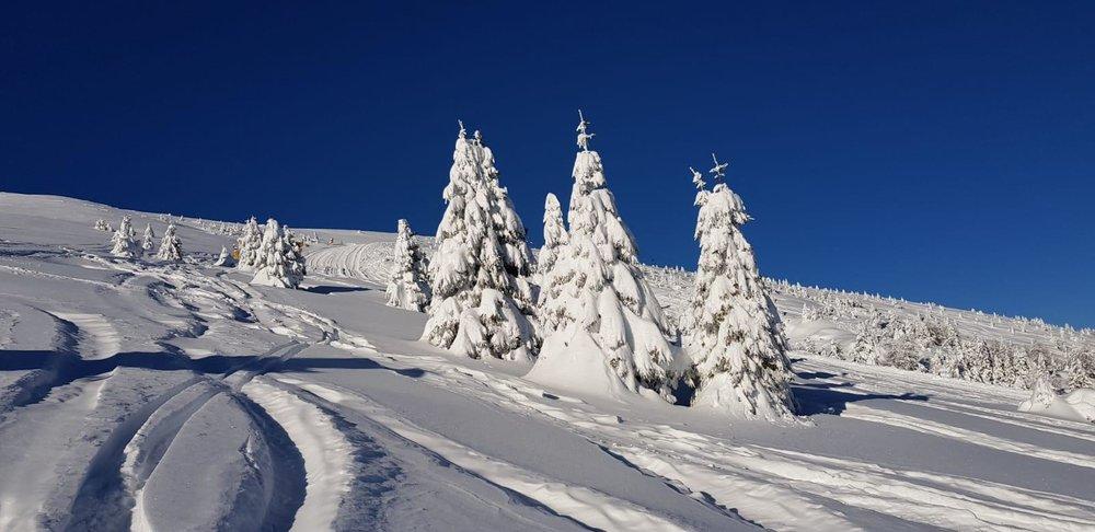 Passo Brocon 04.02.19 - © Visit Trentino Facebook