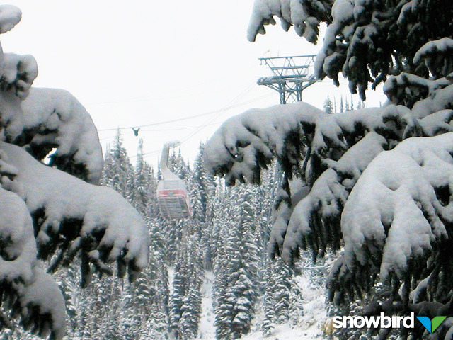 A view of a gondola in Snowbird, Utah
