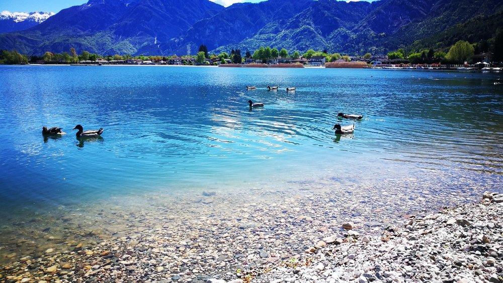 Lago di Caldonazzo vo Valsugane východne od Trientu, druhé najväčšie jazero v Trentine - © facebook | Serena Cauzzi