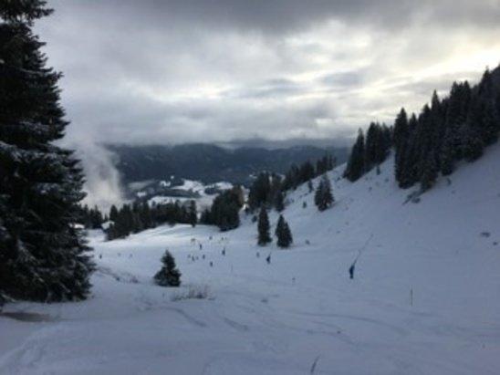 Brauneck - Wegscheid - Endlich frischer Schnee. - © Utä
