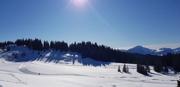 Morzine - Great conditions... - © ---