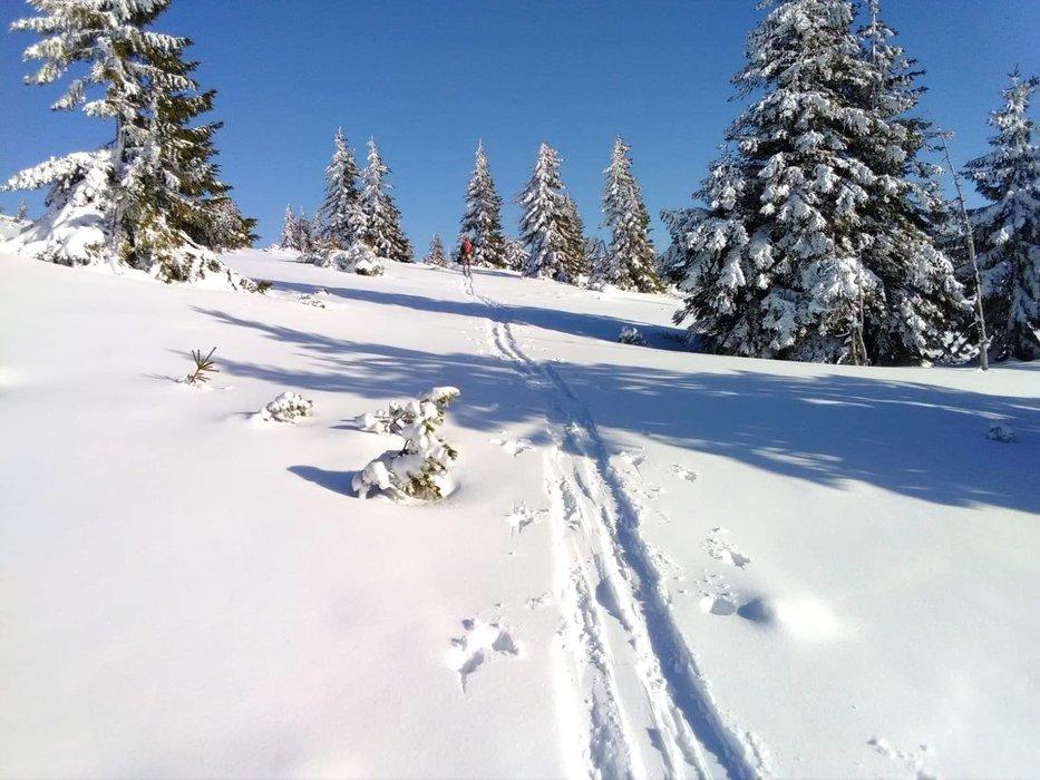 Upravené bílé stopy patří k českým horám stejně jako sjezdovky - © facebook   Areál Peklák - oficiální zimní stránka