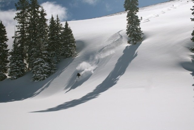 Photo Courtesy of Vail Powder Guides.