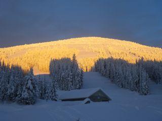 Mt Baldy - © Ski Baldy