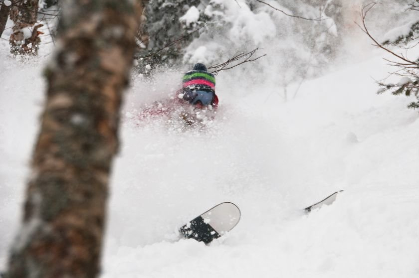 Fill up on powder in the woods at Jay Peak.  - © Jay Peak Resort