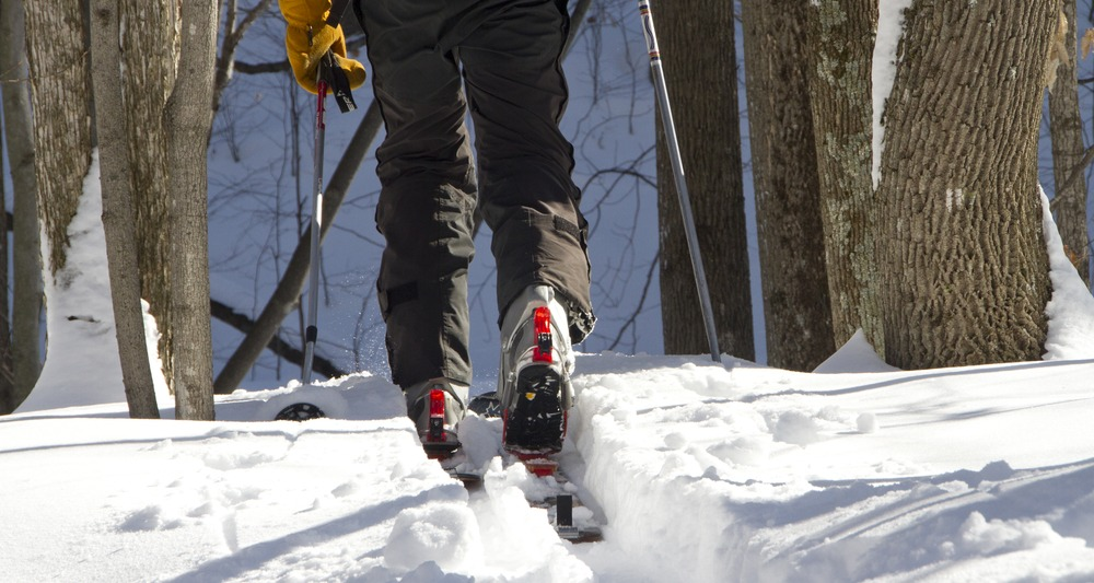 Breaking trail through some wind-protected hardwoods on Sunday. - © Brian Mohr/EmberPhoto