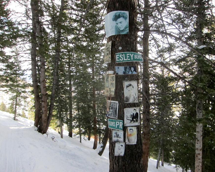 The Elvis Presley Shrine on Aspen Mountain. - ©Amanda Rae