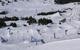 Snowpark Grandvalira - © Grandvalira