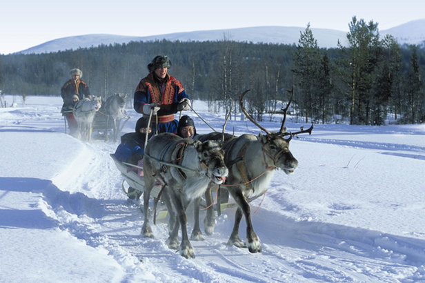 A traditional reindeer ride in Levi, Finland  - © Levi Tourism
