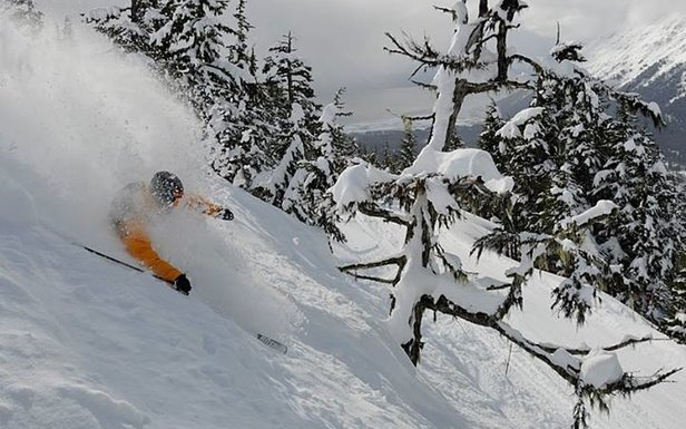 Perfect Alyeska powder.