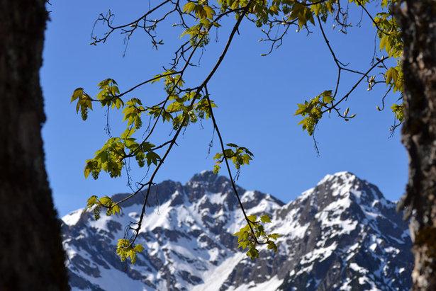 Kleinwalsertal Frühling Dolomiten Berge - ©Kleinwalsertal Tourismus