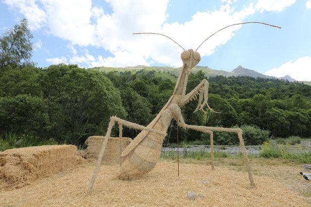 Pendant que la cigale se la coule douce, la fourmi prend forme à Valloire dans le cadre du Concours de sculptures géantes de paille et de foin  - © P Delannoy - OT Valloire