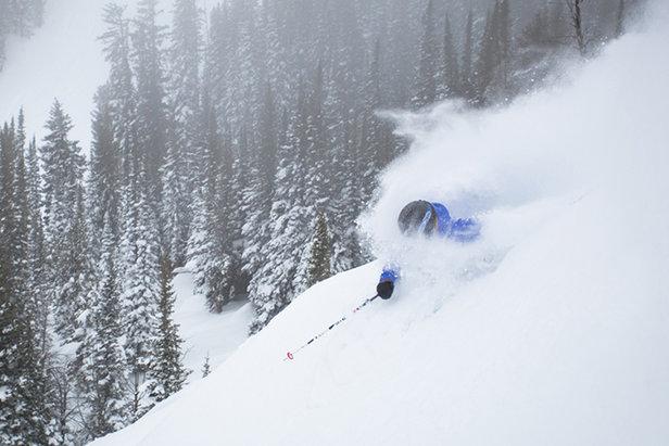 The snow is no joke at Jackson Hole this season.